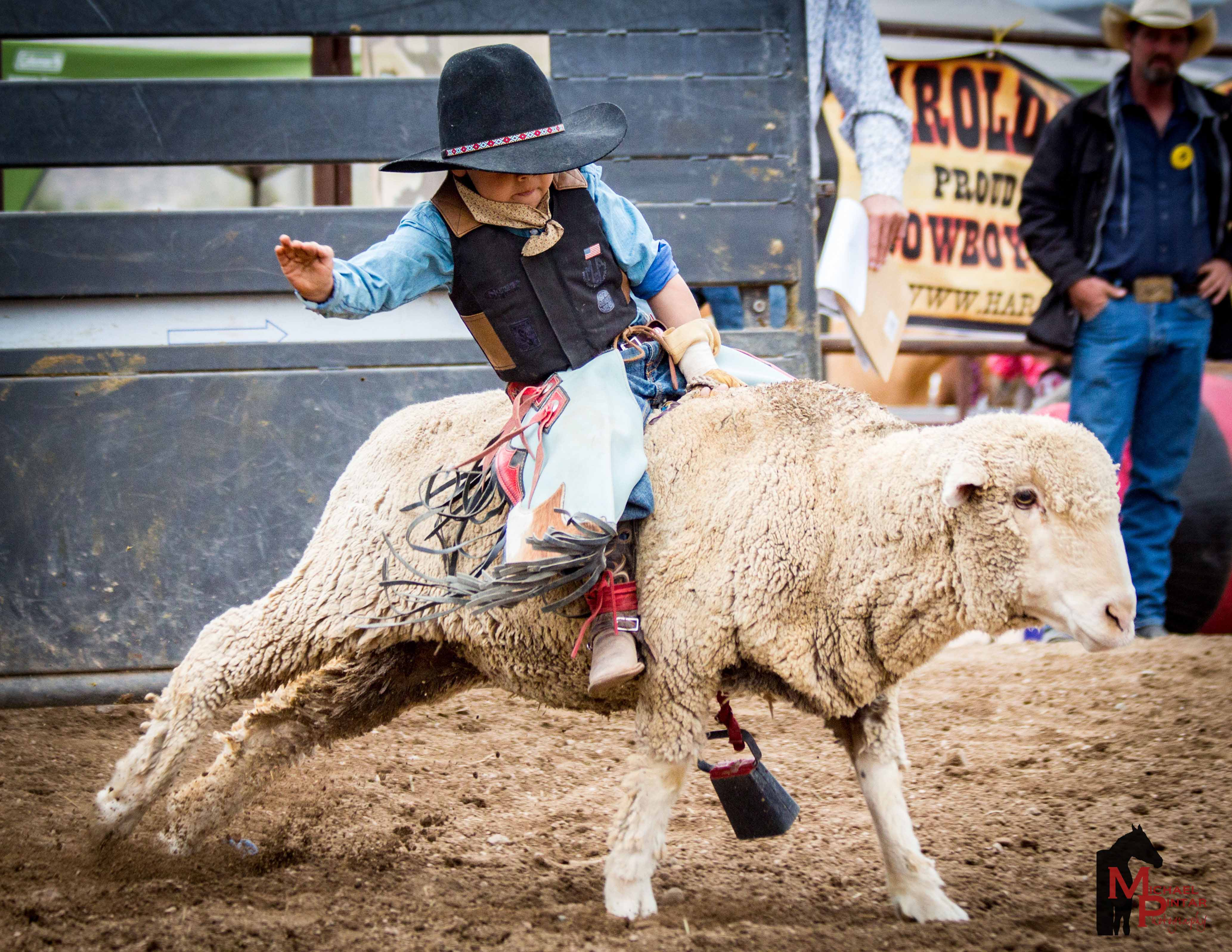 mutton-bustin-low-res-photo-credit-mike-pintar